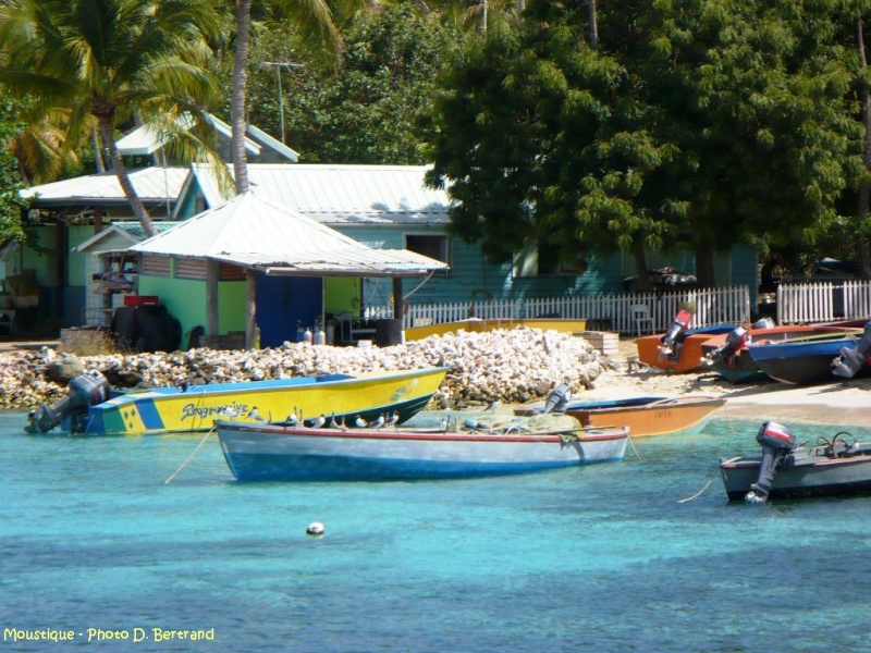 antilles charter grenadines barques