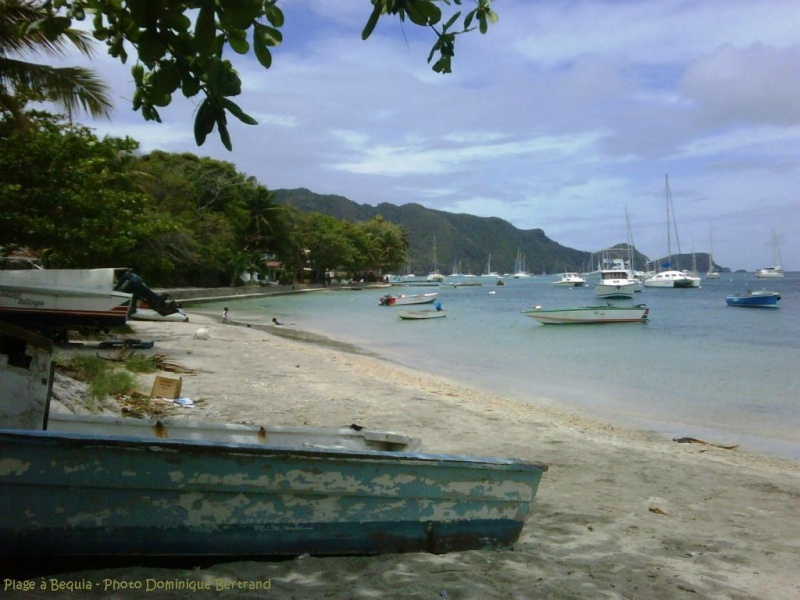 antilles charter grenadines 1